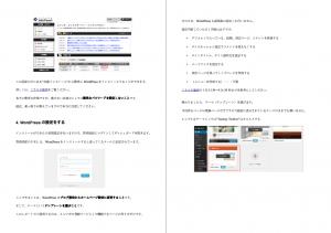 foramebloger-pdf